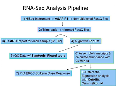 Sequencing Bioinformatics Analysis Translational